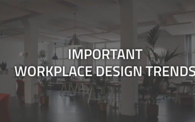 In Focus – Important Workplace Design Trends